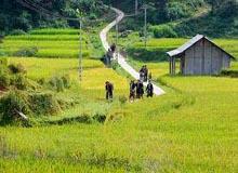 TaPhin-Village